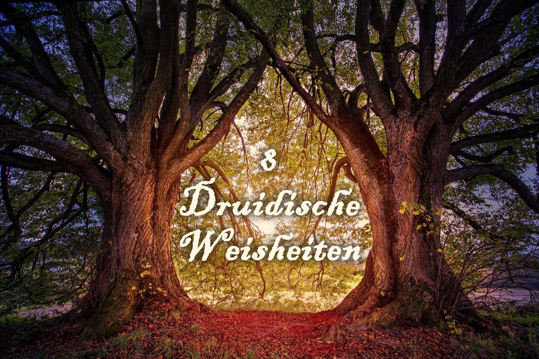 8 Druidische Weisheiten